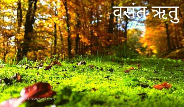 The Spring season in Hindi - वसंत ऋतु हिंदी में