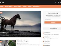 En Kullanışlı Blogger Teması - Marcus V4.0
