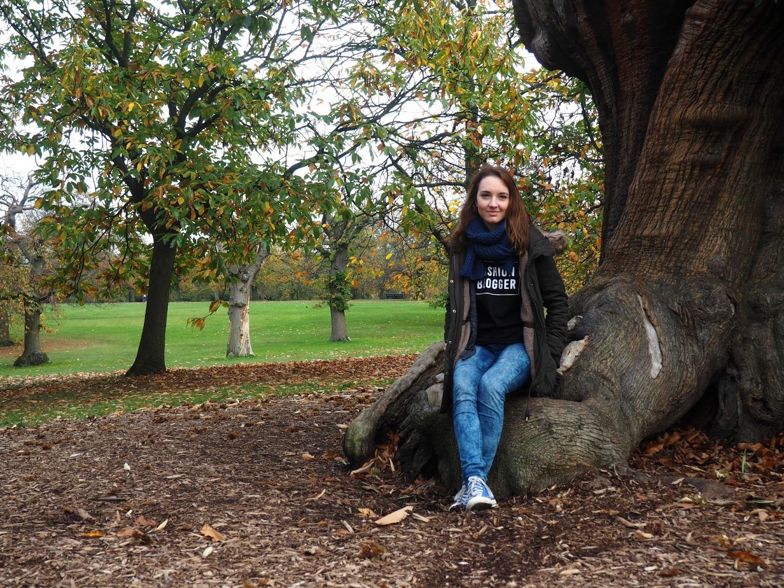 Greeenwichský park