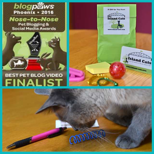 Some of the awesome kitty swag from other bloggers, like Island Cats and Sweet Purrfections