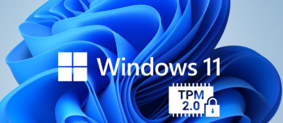 How To Enable TPM