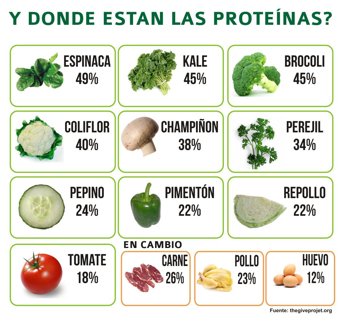 la coliflor contiene proteinas