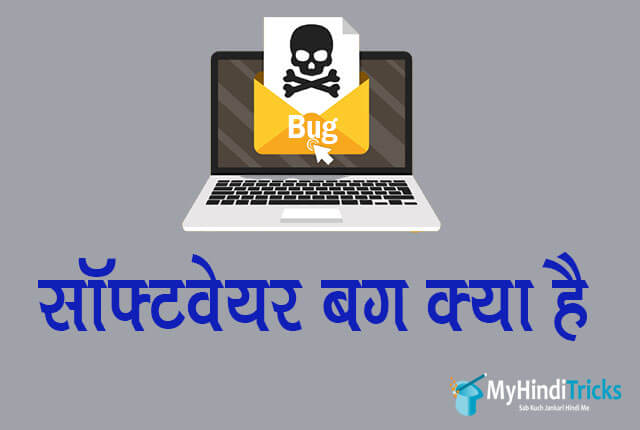 software bug meaning in hindi