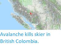https://sciencythoughts.blogspot.com/2019/01/avalanche-kills-skier-in-british.html