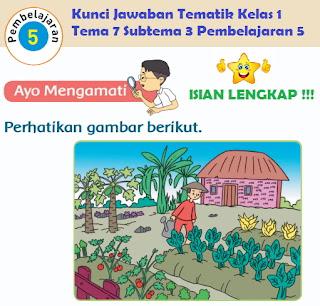 Kunci Jawaban Tematik Kelas 1 Tema 7 Subtema 3 Pembelajaran 5 www.simplenews.me