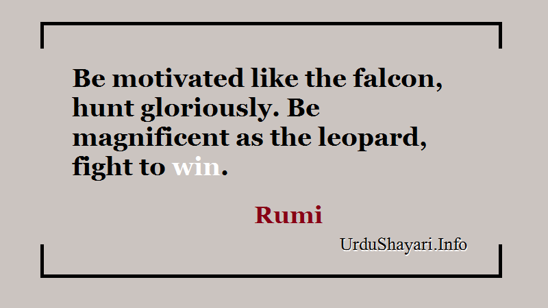 Be motivated like the falcon, hunt gloriously. Be magnificent as the leopard, fight to win.