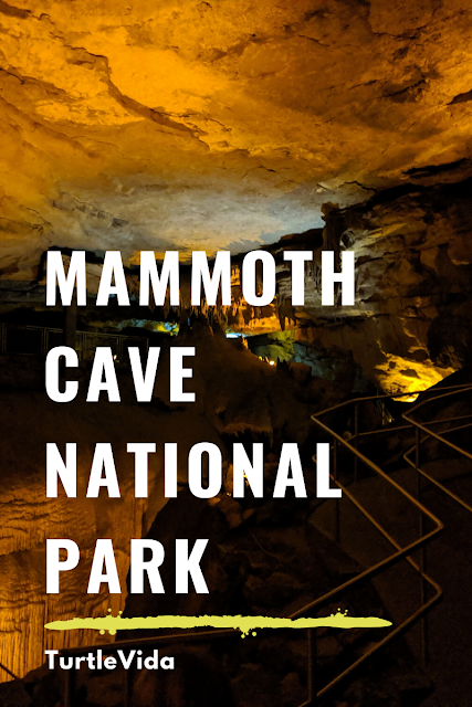 Mammoth Cave National Park | TurtleVida