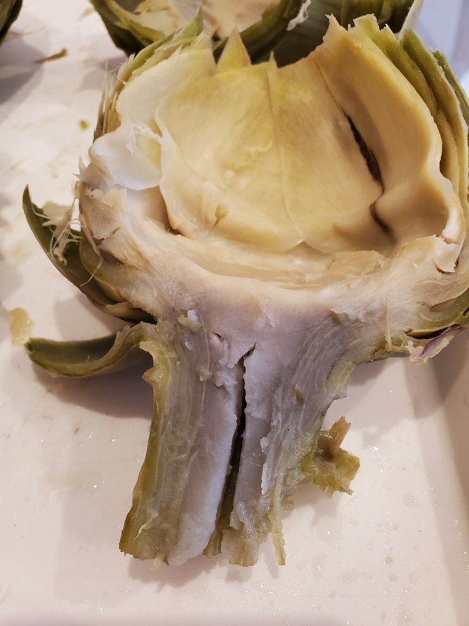 this is a sliced in half artichoke cut side up