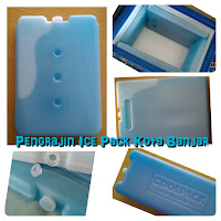 blue ice coolpack pengganti dry ice
