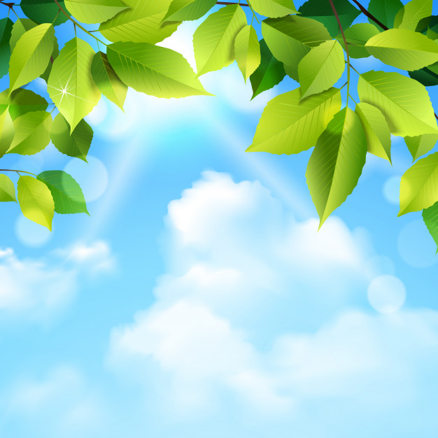 Clouds And Leaves Background Free Vector