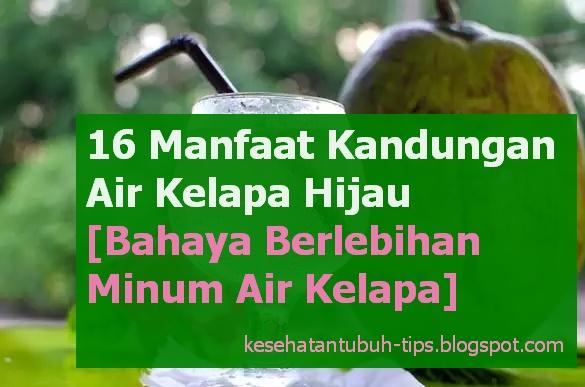Tentunya kita semua mengetahui ihwal pohon kelapa Tumbuhan Berkhasiat  16 Manfaat Kandungan Air Kelapa Hijau [Bahaya Berlebihan Minum Air Kelapa]