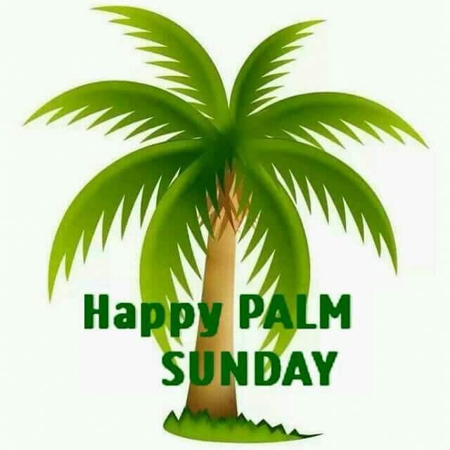 mercyflawless blog: happy palm sunday people
