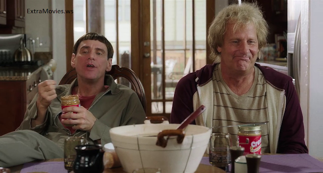 Dumb And Dumber To 2014 download hd 720p bluray