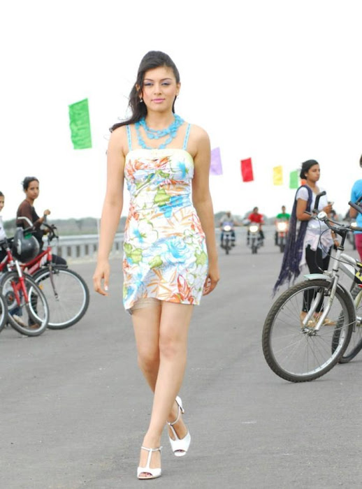 Hansika Motwani Sexy Hd Boobs N Navel Hd Pics Images -1888