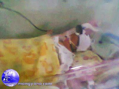 Foto Anak saya saat dirawat di Ruang NICCU RS. Efarina Etaham, Purwakarta.