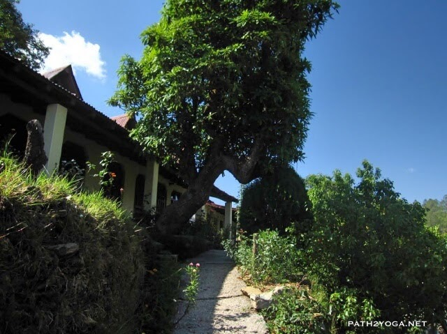 Joshi Guesthouse