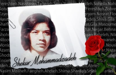 Shekar Mohammadzadeh