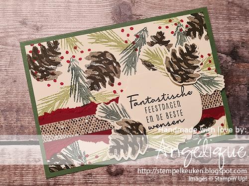 de Stempelkeuken Stampin'Up! producten koopt u bij de Stempelkeuken #stempelkeuken #stampinup #stempelen #stampinupnl #stamping #basteln #knutselen #handmadecards #christmascards #kerstkaart #handgemaaktekaarten #diy #dennenappel #kerstgroen #simplestamping #designerseriespaper #dsp #denhaag