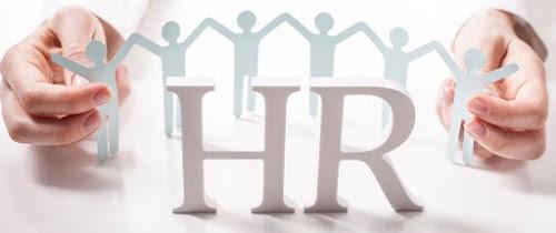 Menggunakan Konsultan HR dalam Perusahaan, Ini Manfaatnya!