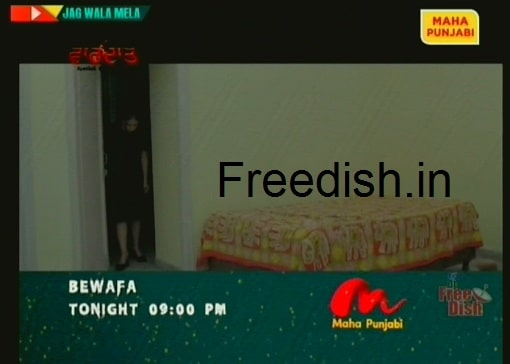 T TV re-branded as Maha Punjabi, It is available on DD Free Dish at Channel No. 81