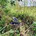 Feira de Santana: Duas mulheres são encontradas mortas em matagal