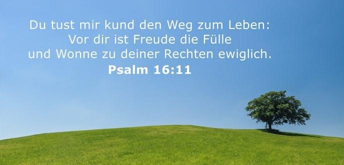 Du tust mir kund den Weg zum Leben: Vor dir ist Freude die Fülle und Wonne zu deiner Rechten ewiglich.