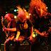 Cientistas afirmam: ''Ouvir Heavy metal pode ser bom para sua saúde mental''