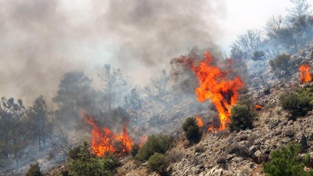 Για ισχυρούς ανέμους και υψηλό κίνδυνο πυρκαγιάς προειδοποιεί ο Δήμος Ερμιονίδας