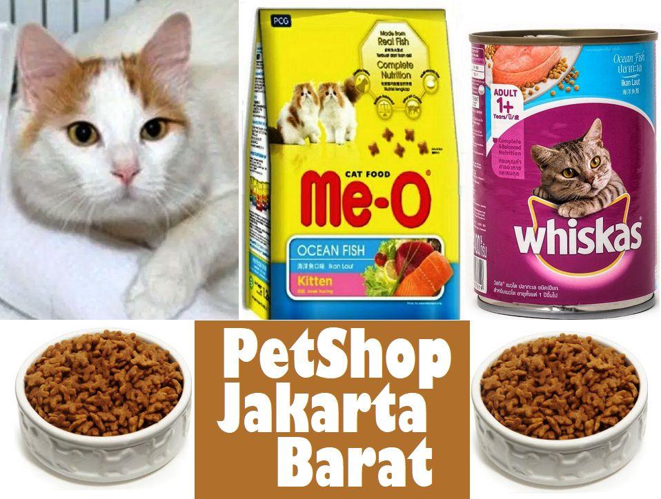 Daftar Petshop Jakarta Barat Yang Bagus