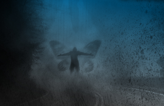 Possible 2011 Mothman Encounter Near Point Pleasant, WV