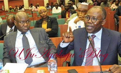 Adoke's lawyer: My client can't be held liable for executing Jonathan's order