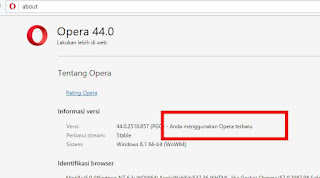 opera browser update