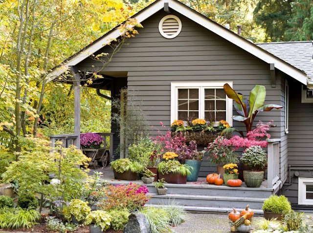 colorful curb appeal with container or instant gardens