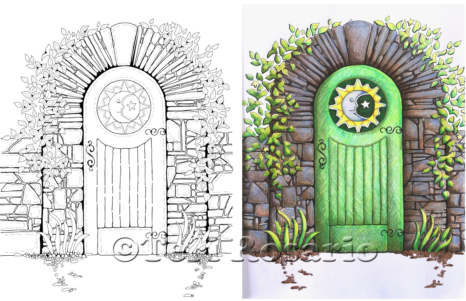 What You See Here Is The Coloring Page Thats On Right And Description Left Which Facing In Book