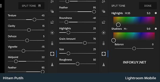 EFFECT & Split Tone  - Cara Edit Foto Hitam Putih di Lightroom