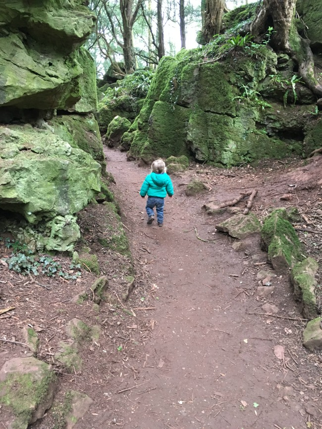 toddler walking on mud path between rocks covered in green plants. Beautiful.