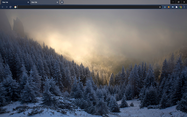 Hoarfrost Google Chrome Theme