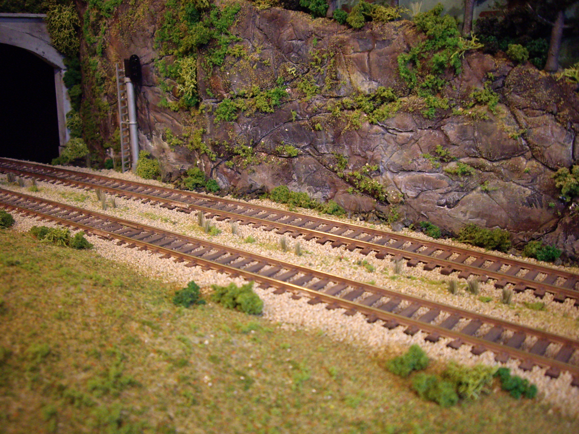 Ballasted tracks with light vegetation and overgrowth