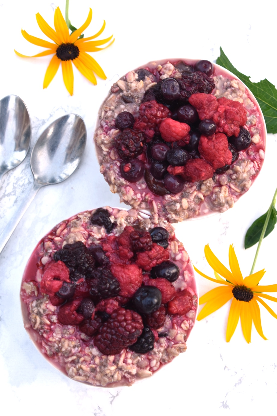 2 bowls of berry oatmeal