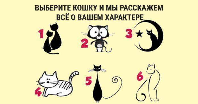 Выберите кошку и узнайте о своем характере