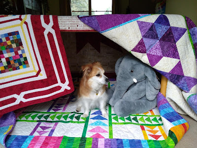 Dog in blanket fort