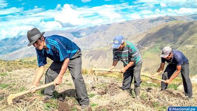 Gobierno crea Ministerio de Desarrollo Agrario y Riego