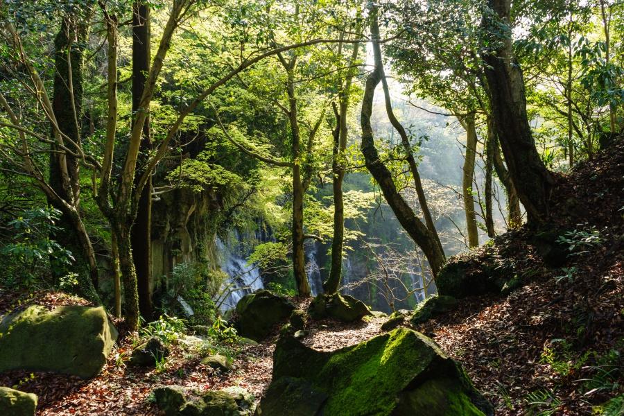 お鬢水(静岡)から白糸の滝方面の景色