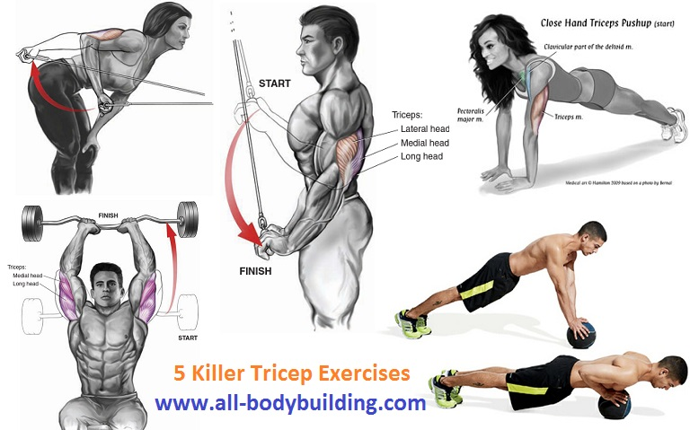 5 Killer Tricep Exercises