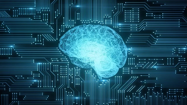 Can We Train AI To Adapt Like Human Brains?