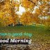 Top 10 Good Morning Images greeting Pictures,Photos for Whatsapp