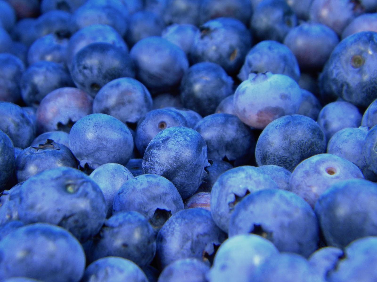 200+ Blue Color HD Images: Blue is the color of Sympathy