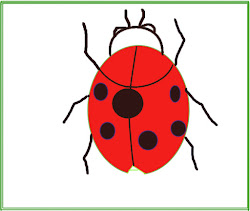 ladybug drawing easy draw simple whole paint