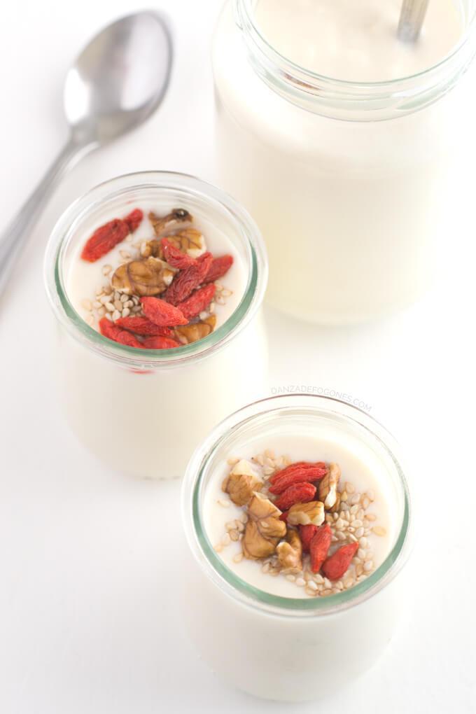 Homemade soy yoghurt - danceofstoves.com