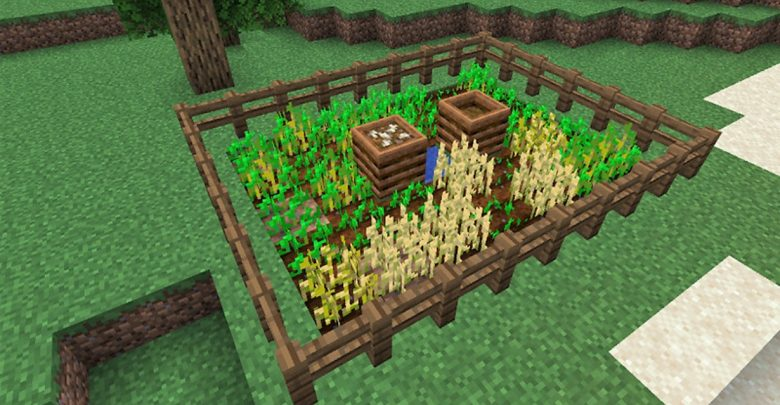 How to make a vegetable garden in Minecraft